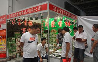绿宝香椿食品有限公司潍坊秋季糖酒会展位风采