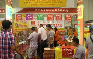 宝丰县爱加一食品参展2015年第十六届郑州秋季糖酒会