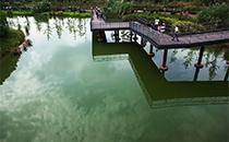 2018成都全国糖酒会游玩景点推荐:成都白鹭湾生态湿地公园