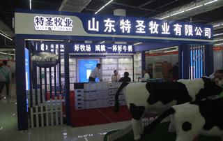 山东特圣牧业有限公司参加2019年春季(第81届)山东省糖酒商品交易会