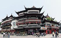 上海酵素展旅游介绍