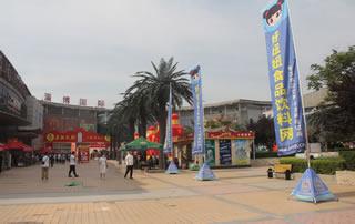淄博国际会展中心好妞妞招商网恭候您的到来