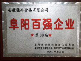 阜阳百强企业