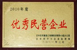 宁强县绿梦食品有限责任公司2010优秀民营企业
