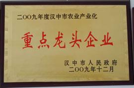 宁强县绿梦食品有限责任公司2009优秀民营企业