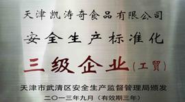 天津凯涛奇乐虎体育乐虎安全生产标准化三级企业