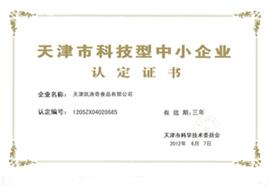 天津凯涛奇乐虎体育乐虎天津市科技型中小企业认定证书