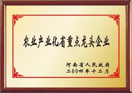 洛阳生生乳业有限公司农业产业化省重点龙头企业荣誉