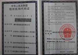 漯河鼎创乐虎体育乐虎组织机构代码证