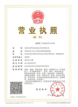 青岛恒伊有机农业开发有限公司营业执照