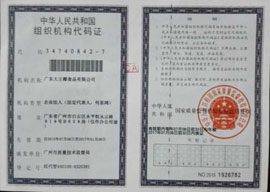 广东大王椰食品有限公司组织机构代码证