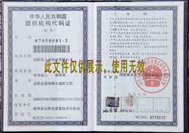 南省岳阳县大成食品有限公司组织机构代码
