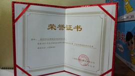 深圳市百家赞食品科技有限公司中国百强新锐食品金奖荣誉证书
