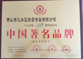 广东隐雪中国著名品牌