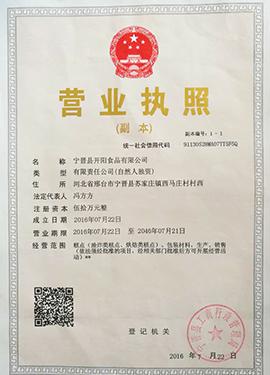 宁晋县开阳食品有限公司营业执照