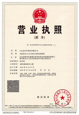 山东省雪仔酒业有限公司营业执照(副本)