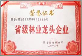"""黑龙江北货郎森林食品有限公司""""省级林业龙头企业""""荣誉证书"""
