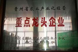 贵州奢香野生源重点龙头企业