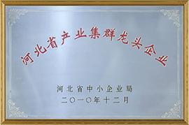 河北省产业集群龙头企业