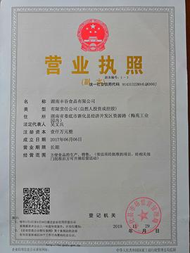 湖南丰谷食品有限公司营业执照