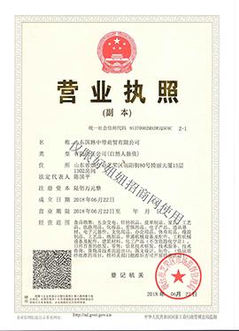 山东国路中带商贸有限公司营业执照
