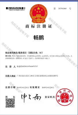 中山市东凤镇星启动贸易商行商标注册证