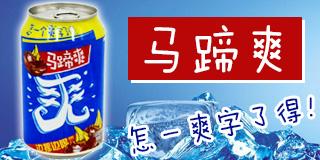 广东隐雪集团