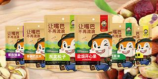 河南省流浪松鼠食品有限公司