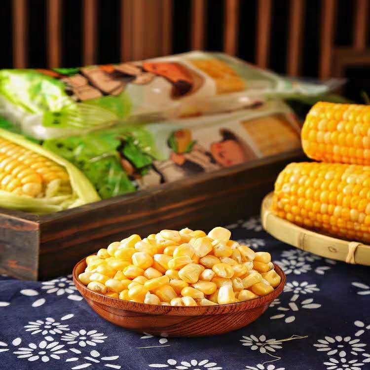 八两阳光真空水果玉米全国招商
